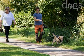 Reportageshooting_DOGS Waldkirch_Breitenkamp_240917-1507_klein