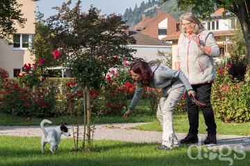 Reportageshooting_DOGS Waldkirch_Breitenkamp_240917-613_klein